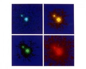 Quasar 1208+101Split by Gravitational Lenses