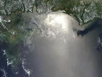 BP: el mayor desastre ecológico de EE UU