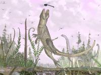 Descubren una nueva especie fósil de cocodrilo con dientes de mamífero