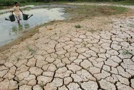 El cambio climático y el hombre