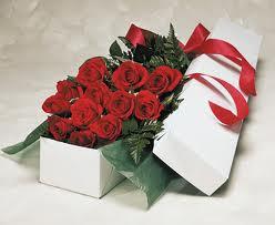 Rosas en el día de la amistad, o de los enamorados, o de San Valentín, el día del amor.
