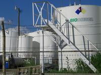 Se fijan los objetivos obligatorios de biocarburantes para 2011-2013