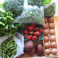 España regula el uso de plásticos reciclados que envuelven alimentos