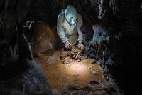 El equipo de espeleólogos durante la bajada a la cueva. Imagen: Floren Fadrique.