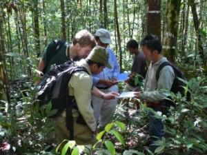 Las ciencias agrícolas y forestales y su utilidad