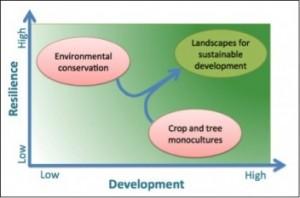 Paisajes para el desarrollo sostenible