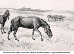 La dieta y el hábitat de los mamíferos sudamericanos del Cuaternario