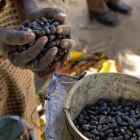 Acaparamiento de tierras y agua en África y Asia