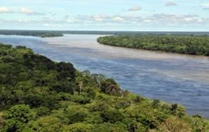 Vista aérea del bosque amazónico, cerca de Manaus, la capital del estado brasilero de Amazonas. Fotografía cortesía de Neil Palmer (CIAT).