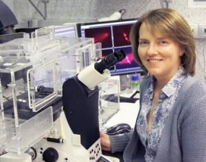 La bióloga celular Isabelle Vernos en su laboratorio el Centro de Regulación Genómica, en Barcelona. / CRG