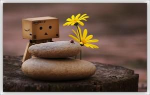 Muñeco, piedras zen y flores