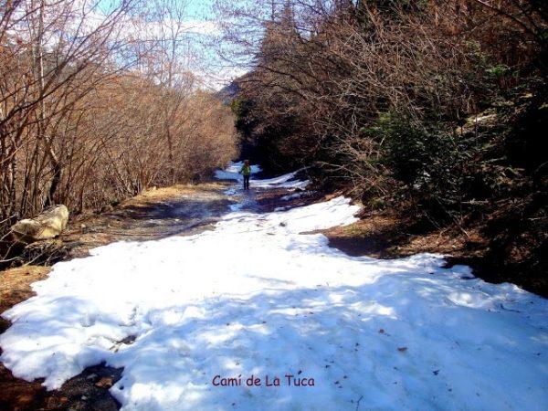 Primavera en los Pirineos 3