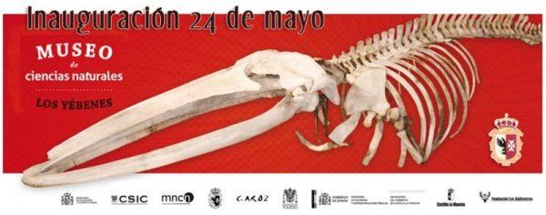 Museo de Ciencias Naturales Los Yébenes
