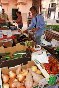 Mercado ecológico. Foto: montuno