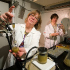 Terapia celular, nuevos materiales y neurociencias son algunas de las áreas de investigación de los Cepid USDAGov/Flickr