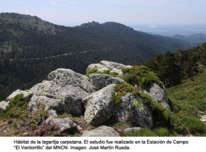 Foto: http://www.mncn.csic.es Agencia SINC