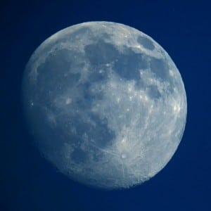 Luna: wolfpix