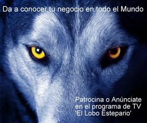 El Lobo Estepario patrocinar