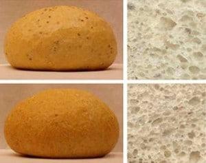 El pan puede contener hasta un 10% de semillas de chía. / Ester Iglesias  Monika Haros