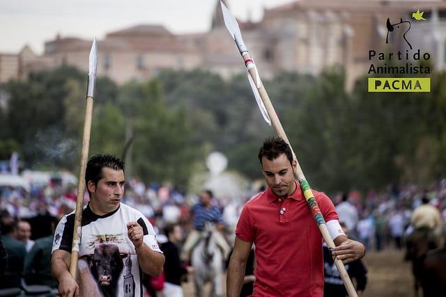 Toro de la Vega: el salvajismo de una tradición atávica