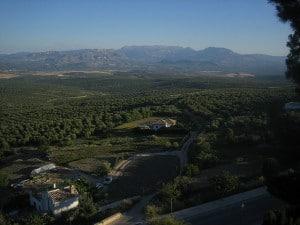 Cerros de Úbeda