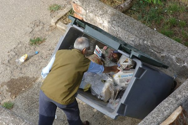rebuscando contenedor basura