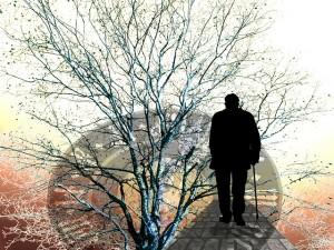 demencia vejez