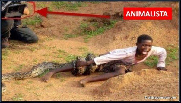 animalistas