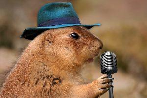 micrófono cantamañanas