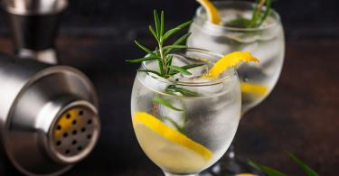 Recetas para disfrutar del mejor gin tonic